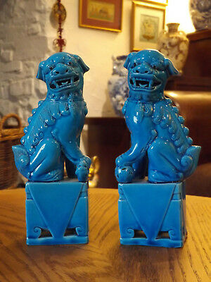 2Chinese turquiose blue glazed porcelain temple foo-lion dogs figueres 20cm high