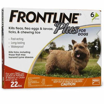 Frontline Plus For Dogs 5-22 lb 6 pack Brand NEW!