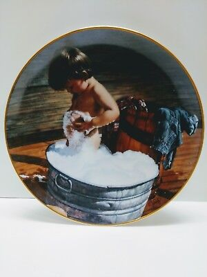 Vintage  Danbury Mint Plate 1991 Clean As A Whistle Jim Daly Boys will be Boys
