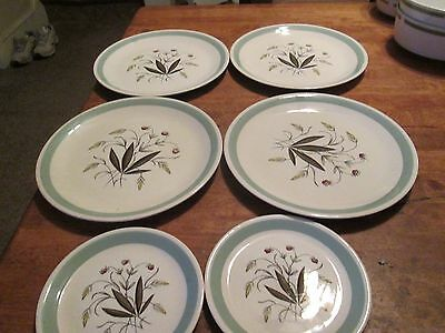 """Alfred Meakin Hedgerow Pottery England  LOT 6 PIECES-4 PLATES 9 3/4""""  2 -6 1/4"""""""