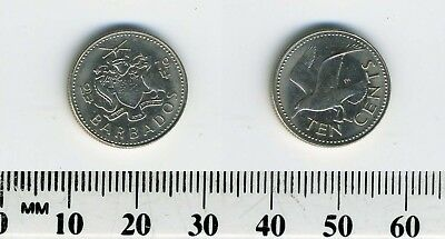 Barbados 1979 - 10 Cents Copper-Nickel Coin - Tern flying left