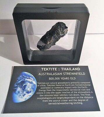 """RARE"" 15.8 Gram TEKTITE Museum Quality with stand and label"