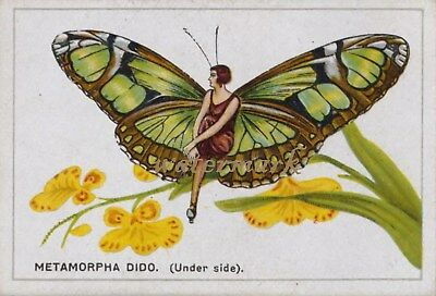 Antique Vintage Trade Card Flapper Butterfly Moth Girls Fabric Quilt Block 9031