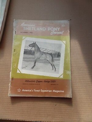 American Shetland Pony Journal November 1960 features Hillswicke's Copper Larigo