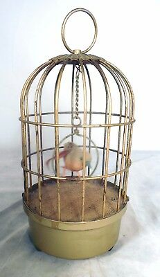 Musical Birdcage Singing Saezuri Bird