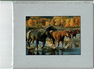 HORSES OF THE CREEK, Tim Cox, Image matted to fit 8X10 RM frame, 13.99, western