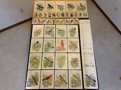 43 SINGER SEWING MACHINE 1927 American Song Bird Trade Cards with 22 Arm &Hammer