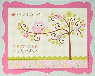 C.R. Gibson Baby's First Year Calendar, By Dena Designs, Stickers Provided, M...