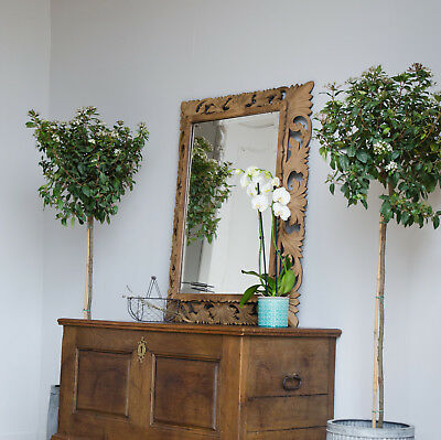 Large French Antique 19th Century Carved Oak Mirror
