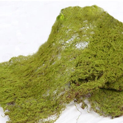WIRED MOSS MAT - 30cm x 40cm - ARTIFICIAL/FAKE GREENERY - TERRARIUM/CRAFT/GARDEN