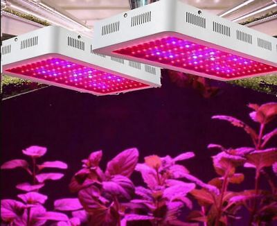 600W 1000W 1200W Full Spectrum LED Plant Grow Light Veg Bloom Lamp Indoor Garden
