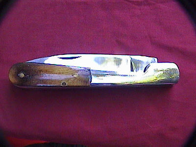 "pocket knife with bone stag handle stainless steel with 3-3/8th"" blade total 8"""