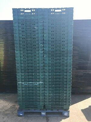 50 x Bail Arm Crates Bale Arm Supermarket Plastic Boxes Stacking Trays 60-40-20