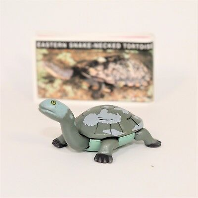 YOWIE Series 1 Eastern Snake Necked Tortoise Paper (intact) + Toy