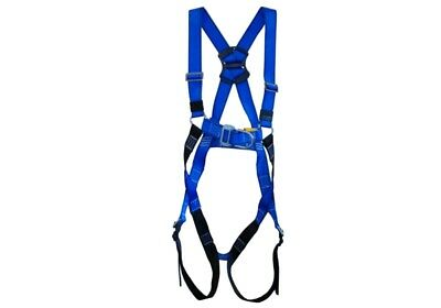 Dual Point Safety Harness (P-35)