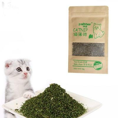 10g Natural Premium Catnip CAT NIP TOY FINE GRIND Very Potent no-stalks