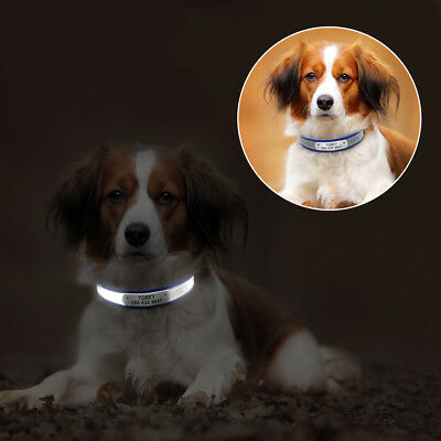 Reflective Small Dog Collar with Name Plate Personalized for Pet Puppy Cat XS-M