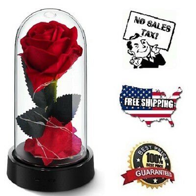 Red Silk Rose Beauty And The Beast Enchanted Flower Glass Dome Valentines Gift