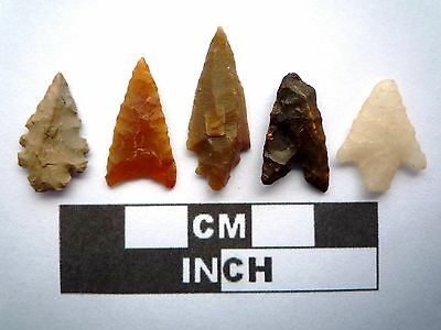 5 x High Quality Neolithic Arrowheads - 4000BC - (K010)