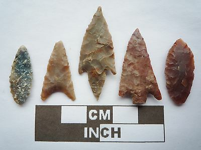 Neolithic Arrowheads x5, High Quality Selection of Styles - 4000BC - (Q094)