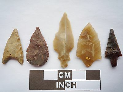 Neolithic Arrowheads x5, High Quality Selection of Styles - 4000BC - (Q077)