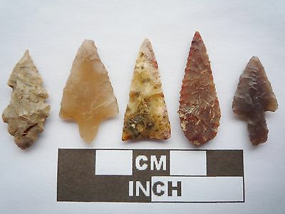 Neolithic Arrowheads x5, High Quality Selection of Styles - 4000BC - (Q091)