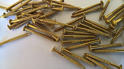 Escutcheon Panel Pin NAILS Solid Brass Aussie Made 100pcs 21x1.85mm SERATED C.1