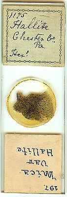 Hallite from Chester County PA Petrographic Microscope Slide for Polariscope