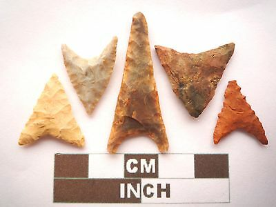 Neolithic Arrowheads, 5 x Triangle Style Artifacts - 4000BC - (Z054)
