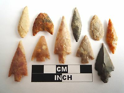 Neolithic Arrowheads x 10, High Quality Selection of Styles - 4000BC - (1088)