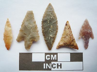 Neolithic Arrowheads x5, High Quality Selection of Styles - 4000BC - (Q087)