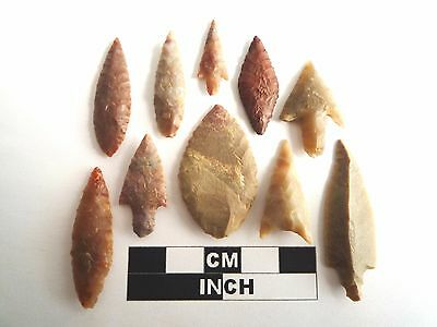 Neolithic Arrowheads x 10, High Quality Selection of Styles - 4000BC - (1091)