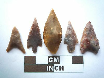 Neolithic Arrowheads x 5, Higher Quality, Genuine Artifacts from 4000BC  (V034)