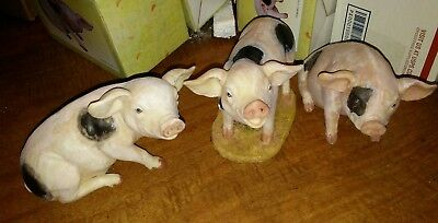 3 Ceramic Resin Pigs - New in their boxes Hogs Swine collectables