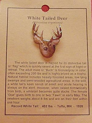 White Tailed Deer  Hat Pin Lapel Pins