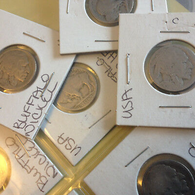 American Undated Buffalo Nickel -- Multiple qty available