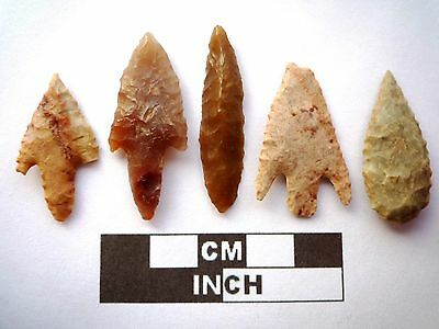 5 x High Quality Neolithic Arrowheads - Selection of Styles - 4000BC - (N067)