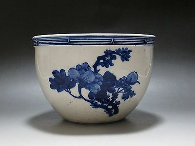 Chinese Blue and white porcelain old Painting jar Pot Hand painted flowe Phoenix
