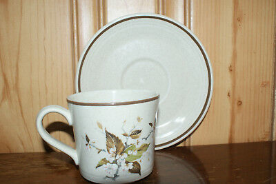 Royal Doulton Lambethware Wild Cherry Cup and Saucer