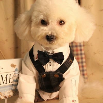 Cat Dog Clothes Accessories Puppy Fashion Necktie Bow Tie Cute Pet Collar