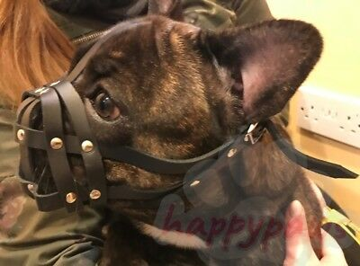 "Leather Dog Muzzle for French Bulldog ""Frenchies"" other short snout dog's"