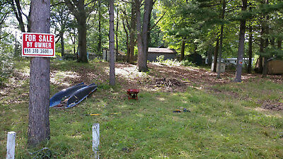 .24 ac Townline Lake lot in Lakeview Michigan for sale