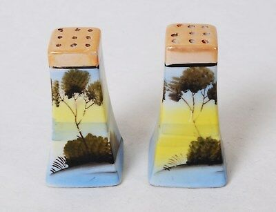 Vintage Porcelain Salt & Pepper Shakers hand painted from Japan 1950' READ BELOW