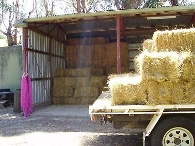 Hay - small squares. 200 to sell.