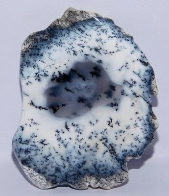 98Cts. Natural Dendrite Opal Rough Fancy Cabochon Plates Gemstone 4159