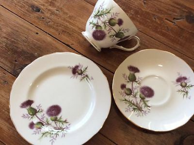 duchess trio thistles great condition teacup saucer plate collectable england