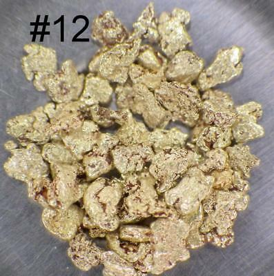 GOLD NUGGETS 2.5+ GRAMS Placer Alaska Natural #12 Fortymile FREE Shipping!