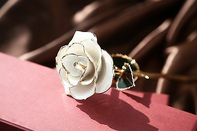 White Genuine Rose Preserved Dipped in 24K Gold Rose Gifts for Valentine's Day