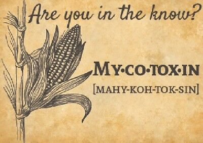 MycoSORB™ Mycotoxin Absorbing Natural Mineral Supplement HEALTH DISEASE LIFESPAN