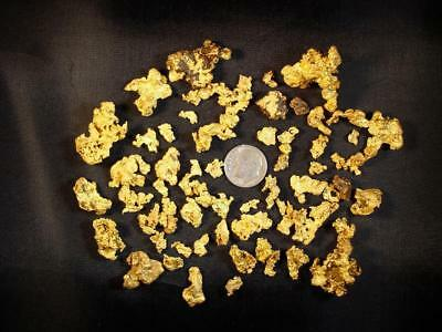 12 oz GOLD PAYDIRT unsearched and added gold panning alaska concentrates